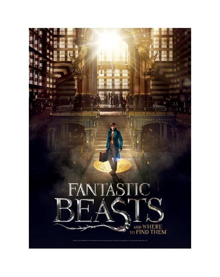 Παζλ Αφίσα - Fantastic Beasts - Macusa