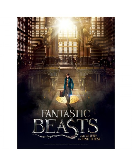 Poster Puzzle - Fantastic Beasts - Mcusa