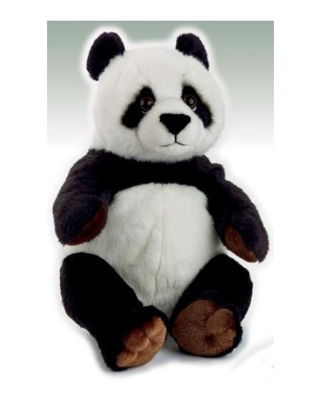 N.G Panda