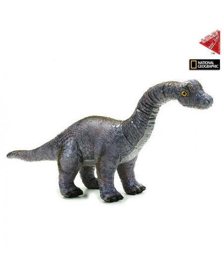Argentinosaurus N.G.