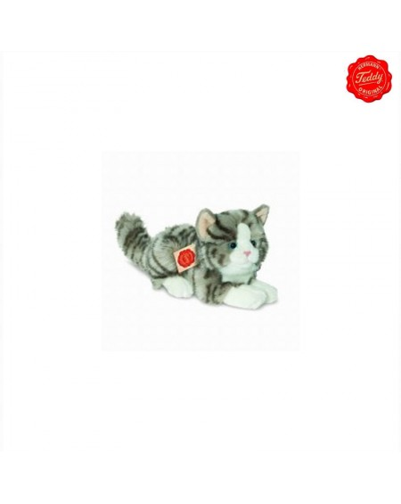 Grey Cat Lying