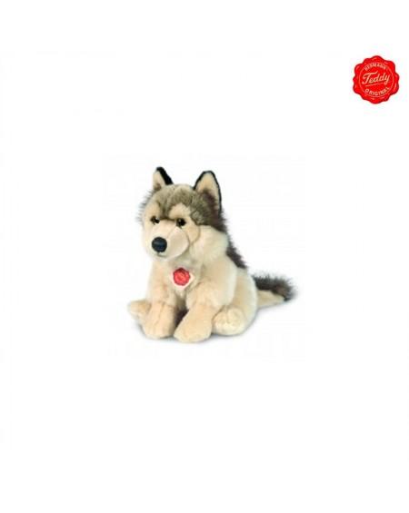 Wolf Sitting