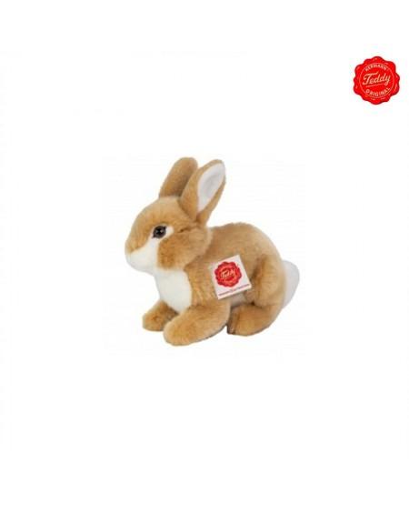 Rabbit Sitting