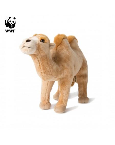 Camel WWF