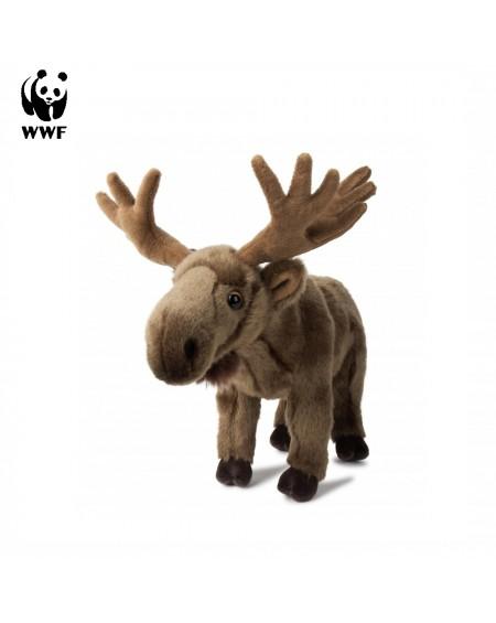 Reindeer WWF