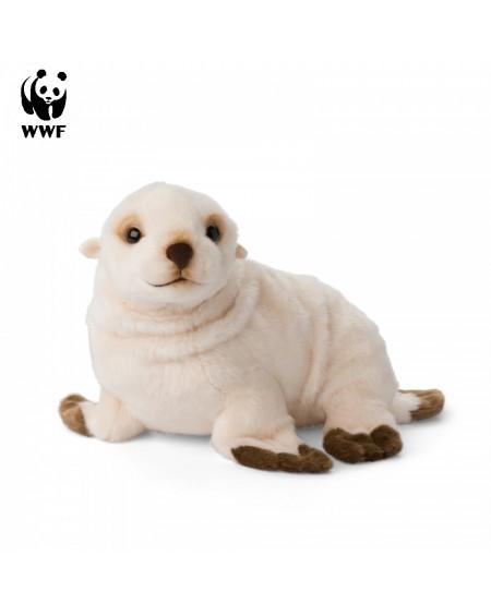 Arctic Seal WWF